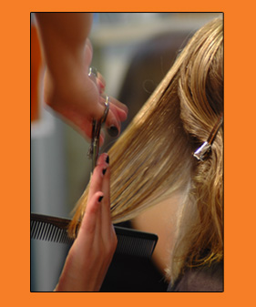 Make an Appointment at Bodhi Salon - Denver, Colorado